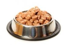 Влажный корм для собак