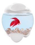 Аквариум Tetra Betta Bubble 1,8л