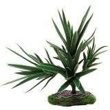 Растение террариумное Агава REP26001