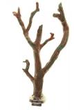 Жердочка Penn-Plax малая ветви
