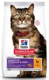 Hill's Science Plan Sensitive Stomach & Skin сухой корм для кошек для здоровья кожи и пищеварения с курицей 300г