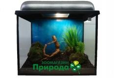 """Оформленный аквариум 20л прямоугольный """"Просто добавь воды""""!"""