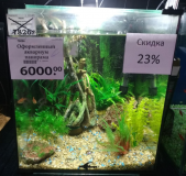 Оформленный аквариум панорама