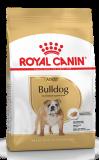 Royal Canin Bulldog 24 12 кг