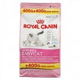 Royal Canin  BabyCat 400+400гр