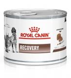 ROYAL CANIN GastroIntestinal Recovery консервы для взрослых собак и кошек в период анорексии, выздоровления 195г