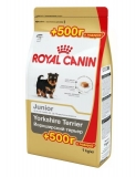 Royal Canin Yorkshire Terrier Junior 500 +500 гр