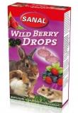 Дропсы лесная ягода Sanal для грызунов 45гр