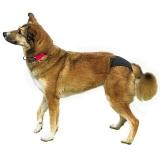 Трусы Trixiе для собак Люкс размер №5 60-70см, черные